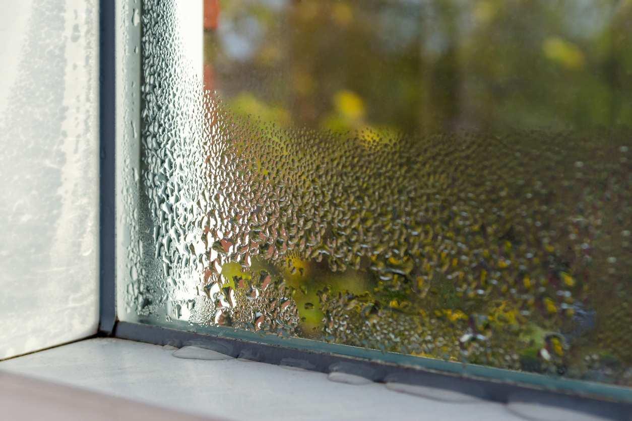 Humidité Dans Une Piece Que Faire comment prévenir l'humidité dans une buanderie ? - bricofamily