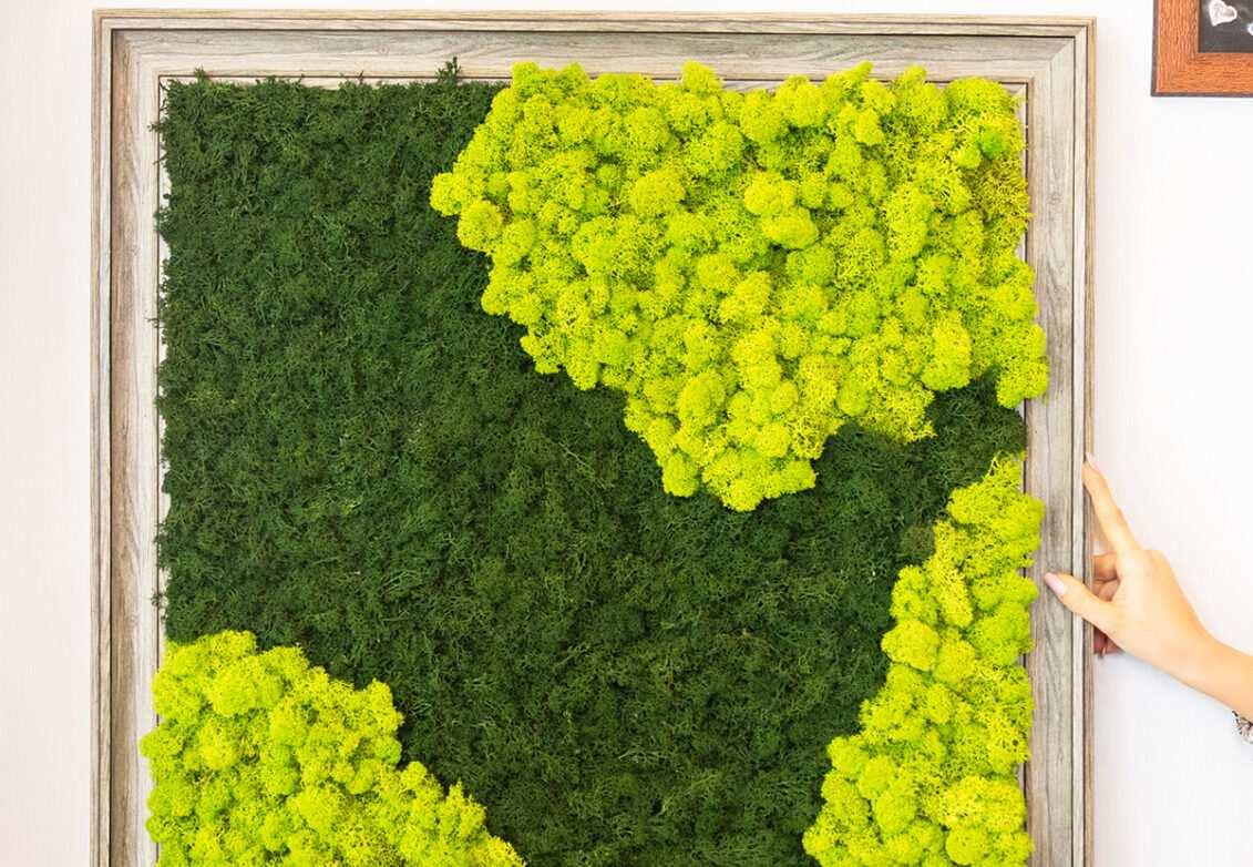 Un tableau végétal en mousse