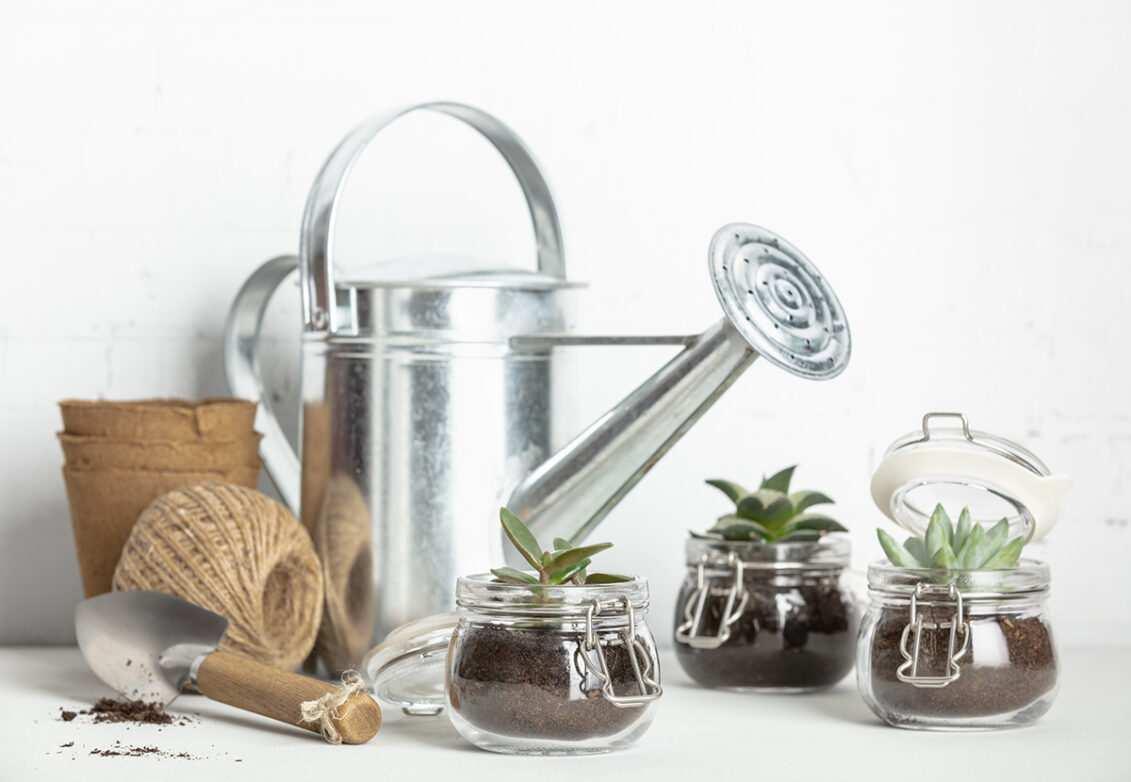 Des bocaux transformés en pot pour plantes grasses