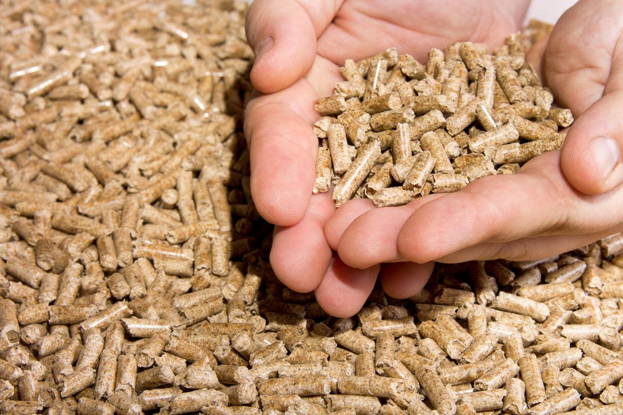 on apprécie la simplicité des granulés de bois