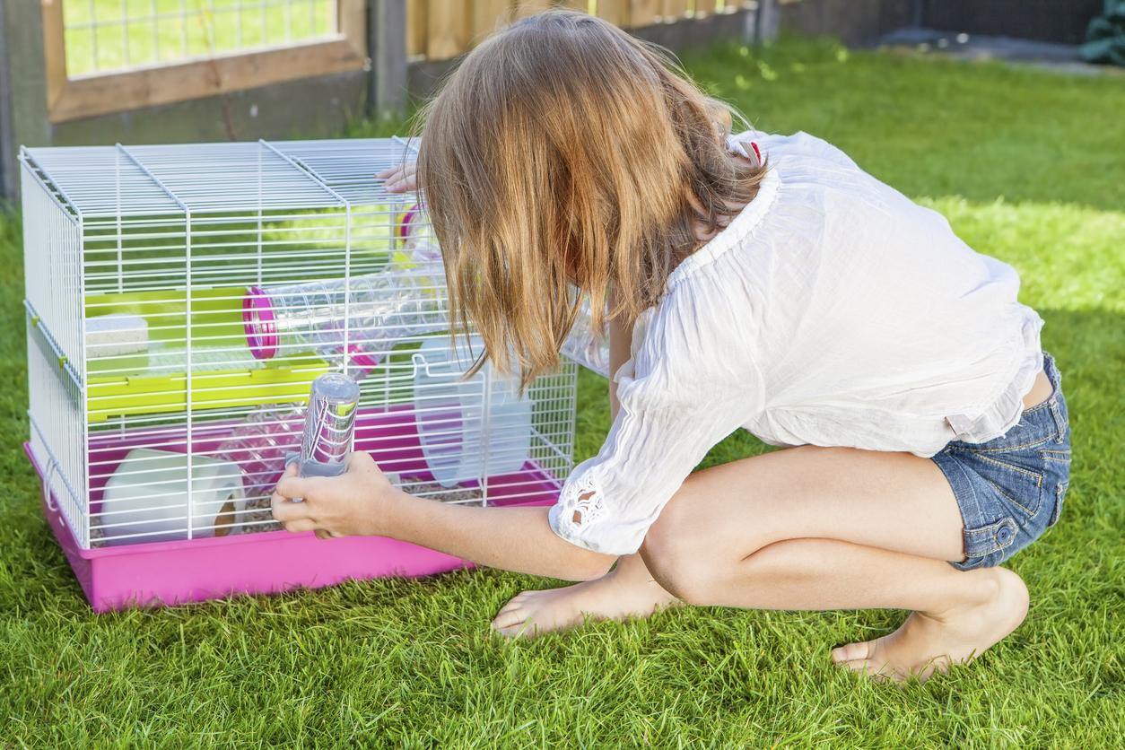 Pour un hamster heureux, une cage, rien de mieux!