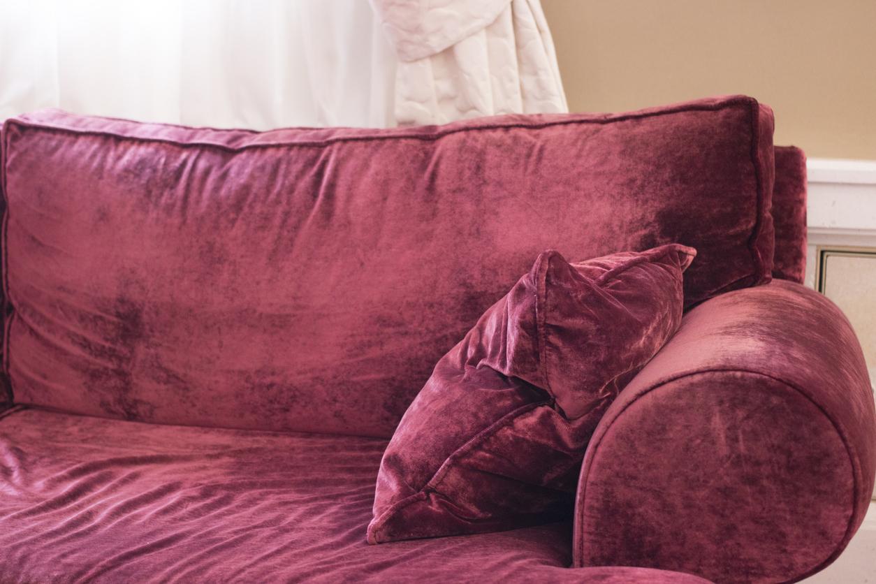 Adoptez le velours dans votre salon